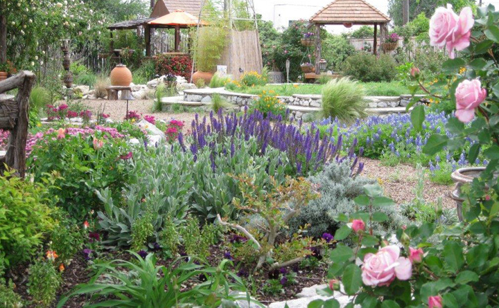 Landscape Architect Dallas Landscape Design Walkabout